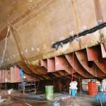 Columbia Ship Management – Nino Thumbnail