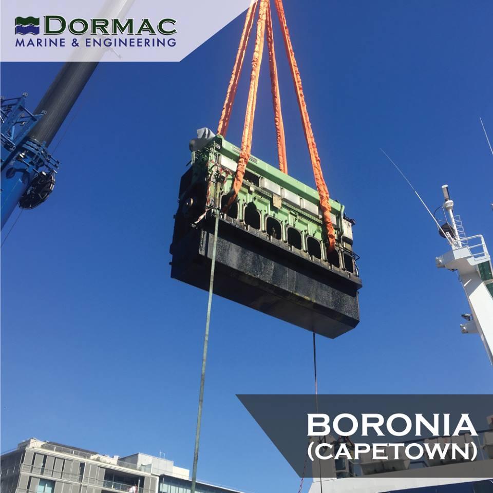 The Boronia